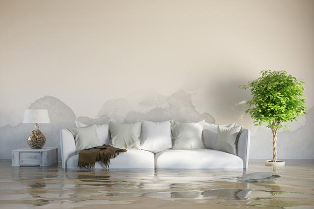 inundaciones-domotica (2)