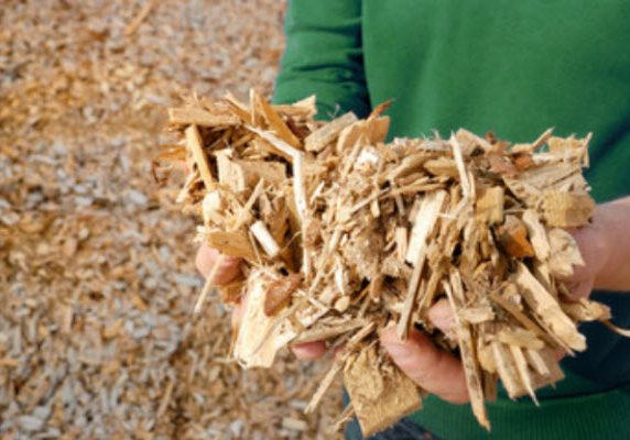 Calderas de biomasa2