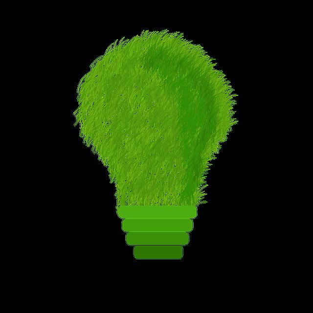 green-1966408_640